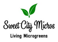 logo-transparent-background.png